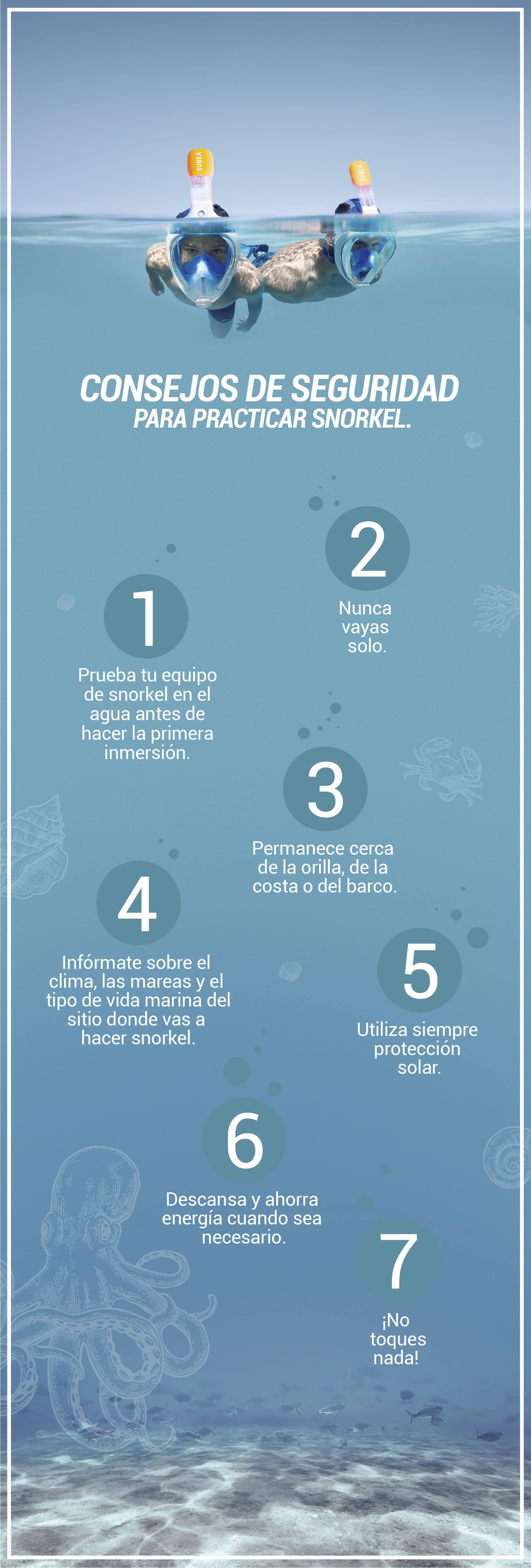 infografía_snorkel_3-02
